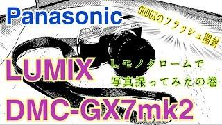LUMIX DMC-GX7mk2 L.モノクロームで写真撮ってみたの巻 GODOXのフラッシュ開封!