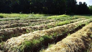 Permaculture (quelques exemples)