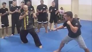 Rei das artes marciais no Brasil