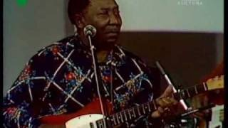 Muddy Waters in 1976: Kansas City (superb cover)