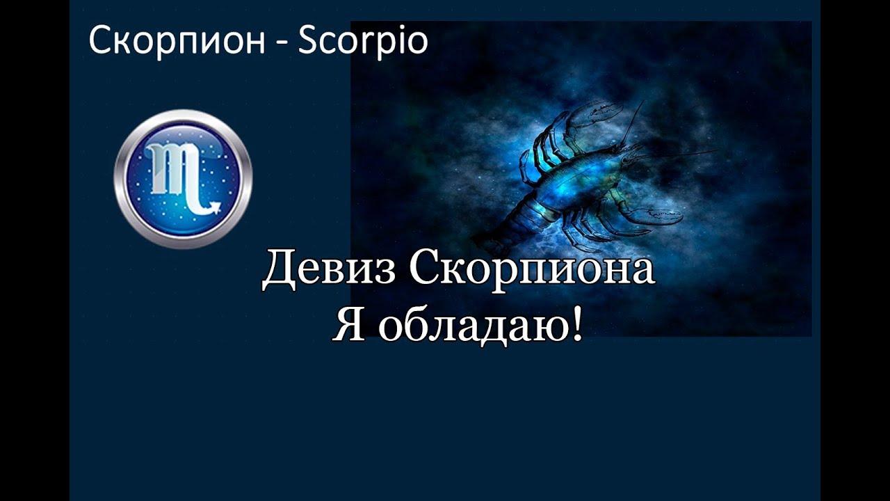 ⭐Магия Скорпионов. Знак зодиака Скорпион — врожденный психолог.