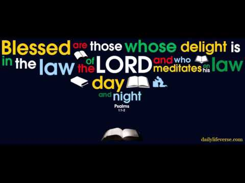 MEDITATE ON HIS WORD DAY AND NIGHT
