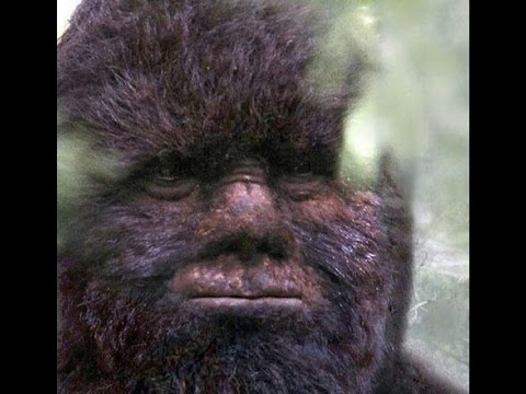 Bigfoot wallpapers, Fantasy, HQ Bigfoot pictures | 4K