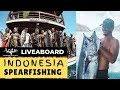 Spearfishing Indonesia: Liveaboard Travel around  Flores Sea with Andre Wicaksana