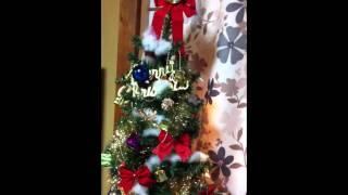 我が家のクリスマスツリーです。