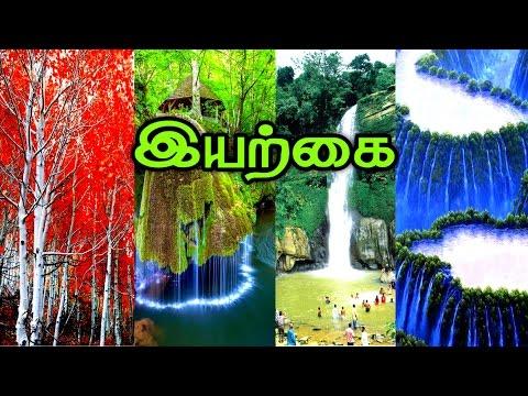 Nature | Kindergarten Kids | Kindergarten Learning Video in Tamil