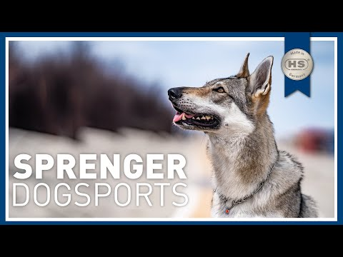 sprenger-germany---dog-sports-/-dog-equipment