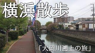 横浜散歩@2018/4/5 大岡川をさかのぼる、源流を求める旅
