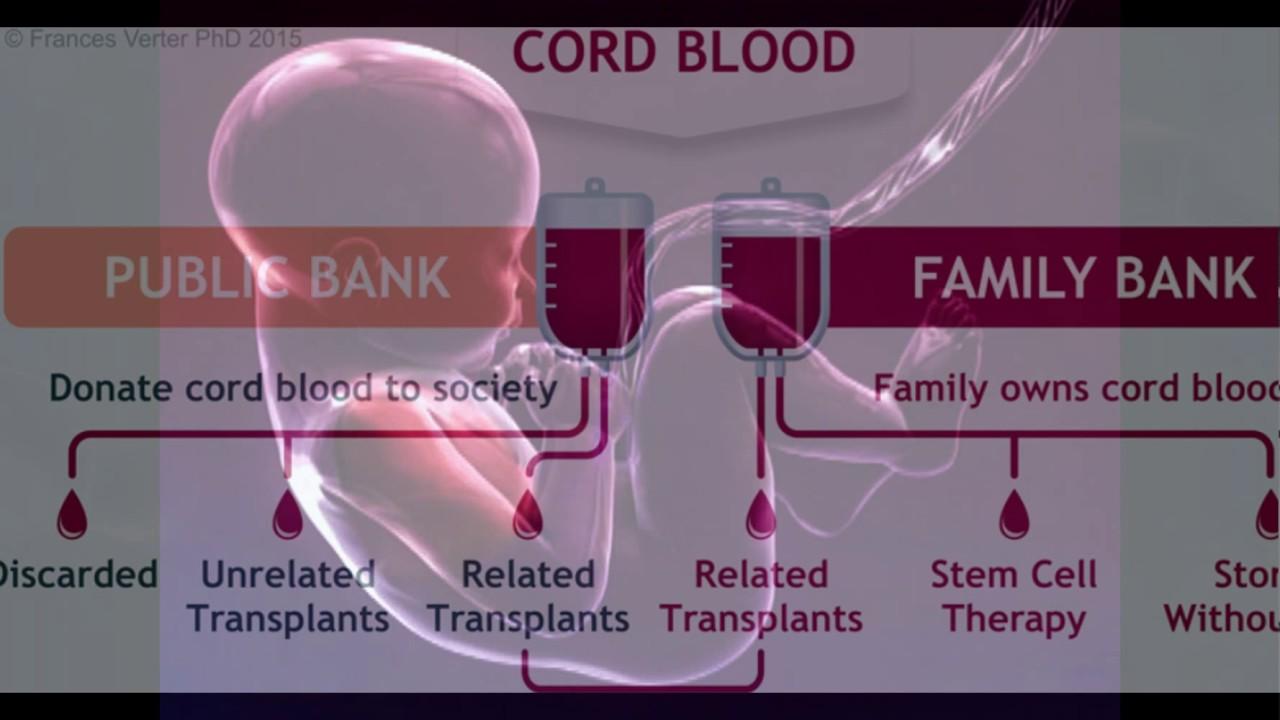 cord blood Cord Blood 101: What is Cord Blood? | Cord Blood Registry