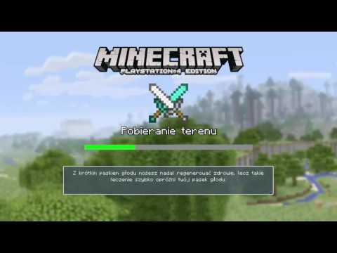 Minecraft Ps4 Mini Gry