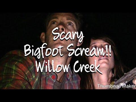 Bigfoot Willow Creek scary tent scene
