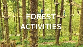 North York Moors - Forest Activities