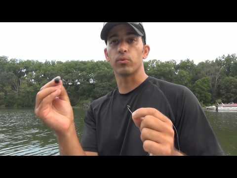 How To Hook A Leech (Near The Sucker)