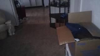 Home alone!