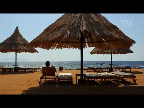 Destination Red Sea by Starwood Hotels & Resorts