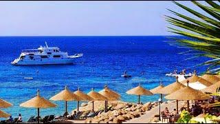 8 отелей Шарм Эль Шейха в безветренных бухтах для отдыха зимой в Египте Отдых в Шарм эль Шейхе зимой