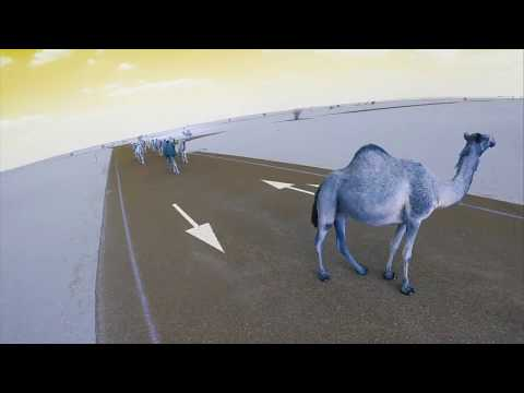 Stray Camels Dubai FPV Freestyle