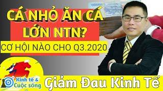 NĐT nhỏ chiến thắng NĐT lớn 6 tháng đầu năm - Cơ hội cho Quý 3.2020 | Phan Dũng Khánh