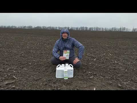 Стимулятор роста Регоплант на картофель с микроэлементами. Стимулятор росту на Картоплю Регоплант.