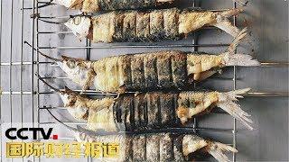 [国际财经报道] 日本东京目黑迎来秋刀鱼节 数万人街头品尝美味 | CCTV财经