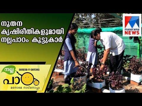 Nallapadam activities of Vadaserripuram GHS and Cherupuzha JMUP school     Manorama News