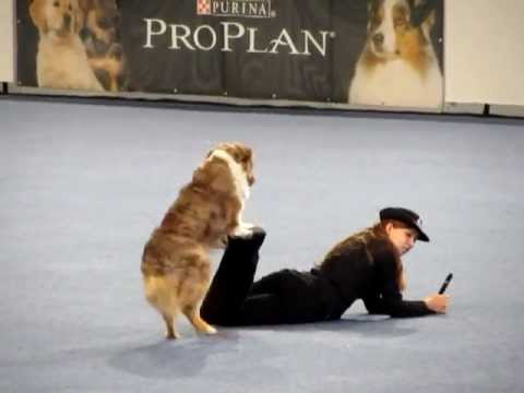 Freestyle Dog Dancing - Vanda Gregorova & All That Brandy Gentle Mate