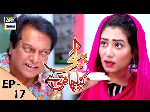 Bubbly Kya Chahti Hai - Episode 17 - 27th November 2017 - ARY Digital Drama
