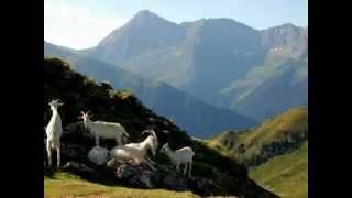 Pastoralisme de Bigorre