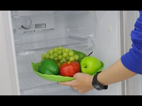 Những Lưu ý Khi Dùng Tủ Lạnh Có Nhiều Thực Phẩm
