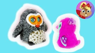 电子宠物 猫头鹰 HIBOU 可爱 说话 HATCHIMA 跳舞 毛绒 玩具 娃娃 动物 对比 展示