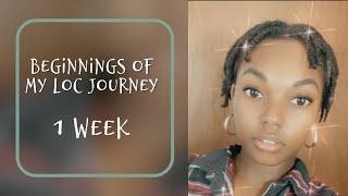 Starter Locs On Short 4c Hair | Documenting My Journey | Naomi Onlae