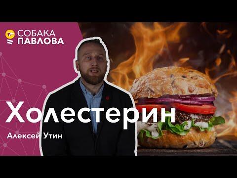 Холестерин - Алексей Утин //плохой холестерин, липопротеиды высокой плотности, атеросклероз