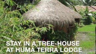 Treehouse holiday accomodation in Sri Lanka 斯里兰卡的度假树屋