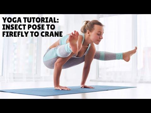Yoga Tutorial: Insect Pose to Firefly to Crane | Joan Hyman | YogaVibes