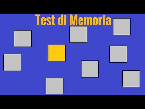 Visuospatial Working Memory Test