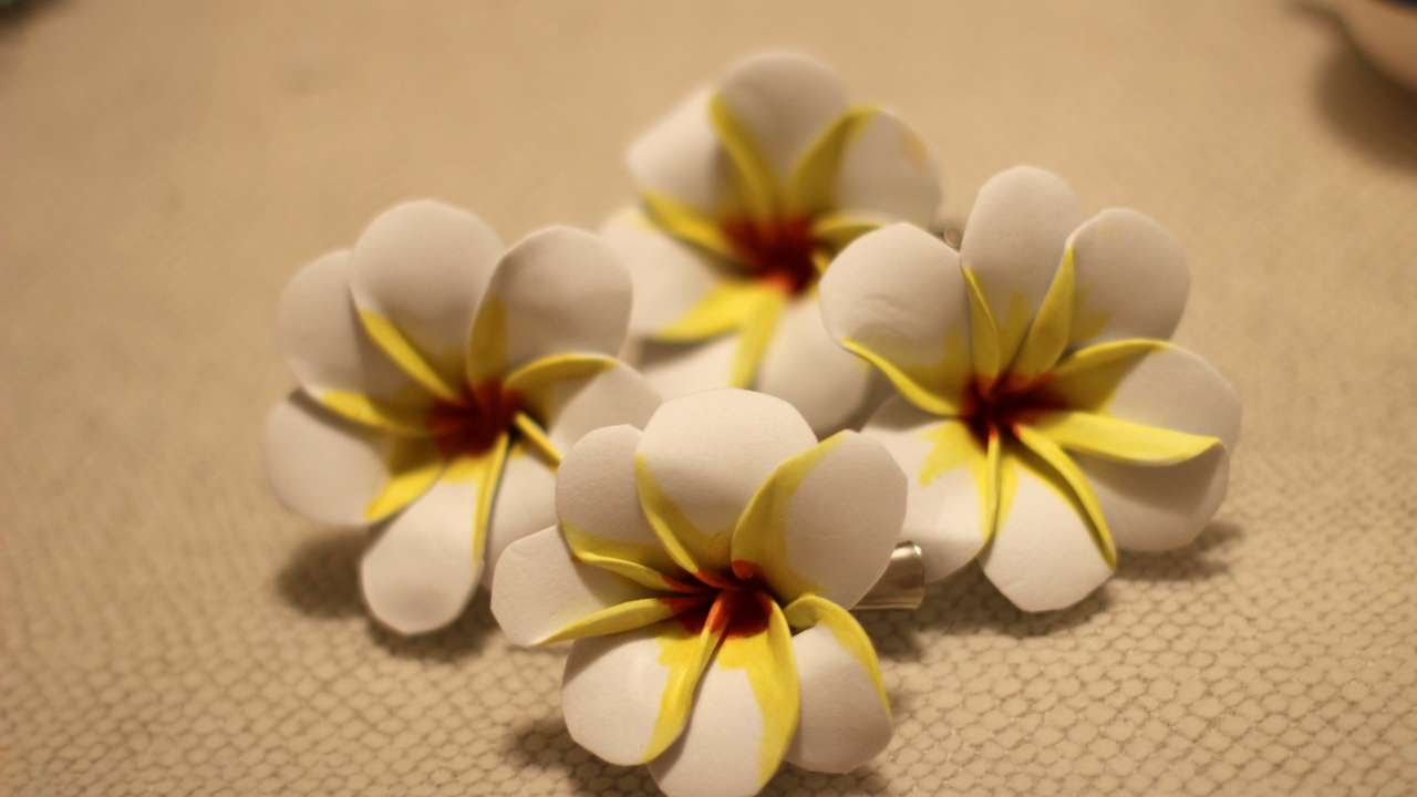 How To Create A Hawaiian Hula Hair Clip Diy Style Tutorial