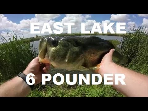 Huge Pond Bass on Ft. Hood!!!  East Lake and Then Some