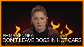 'Shameless' Star Emma Kenney Tells Us What She Thinks of People Who Leave Dogs in Hot Cars