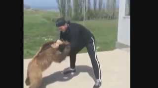 Khabib Nurmagomedov wrestling with a Bear.