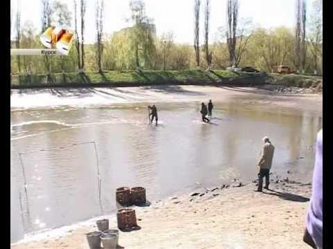 рыбалка в курской области реутец