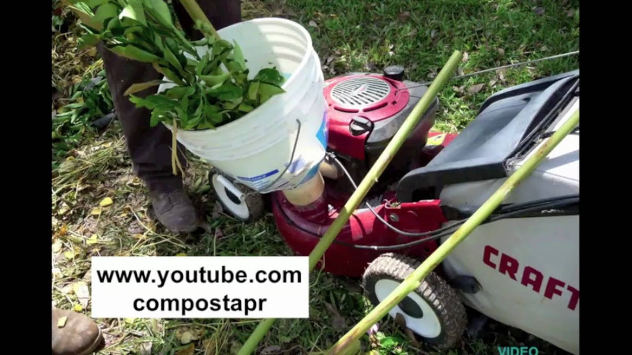 2/4 Home Composting