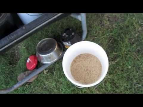 Sprouting Grain For Animal Feed