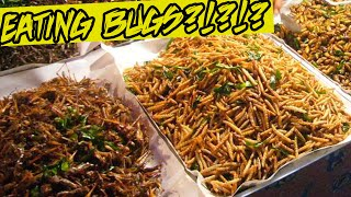 BUG EATING CHALLENGE!! | #ThailandTuesdays Ep. 4