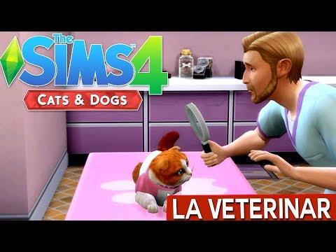 Mergem la veterinar / The Sims 4: Cats & Dogs