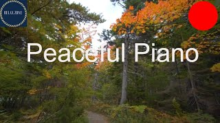 Peaceful Piano Music for Cooking, Relaxing Music with Nature Sounds
