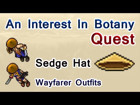 Tibia: Sedge Hat - An Interest In Botany Quest