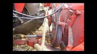 colheita milho ildo - jumil 360g