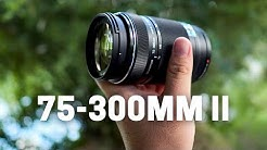 Olympus 75-300mm F4.8-6.7 II - The Underrated Super Telephoto Zoom Lens