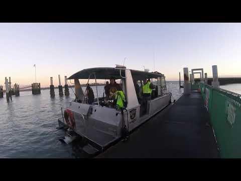 Phoenix Charters Fishing Trip Auckland