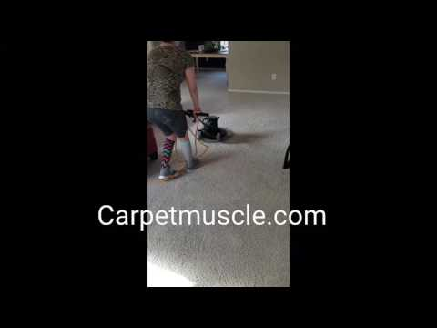 Carpetmuscle.com is Carpet cleaning in Austin Texas.